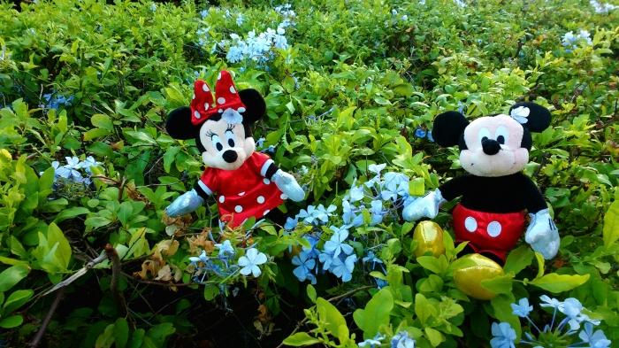 O casal de camundongos Mickey e Minnie faz sucesso nos desenhos e encanta grande parte do público. Foto: Yasmin Thomaz