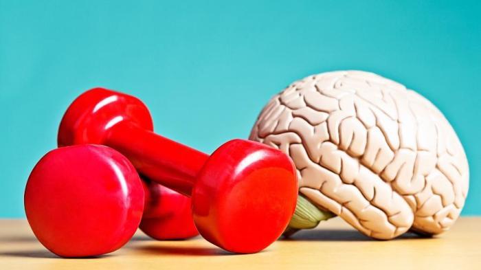 cerebro-exercicio-1548259173255_v2_900x506
