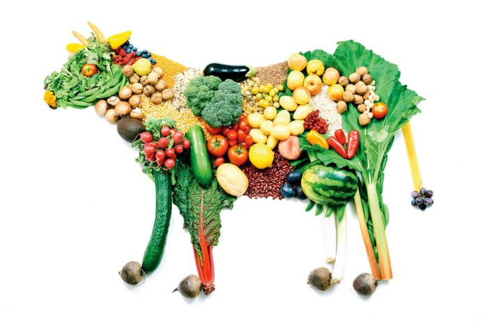 Veganistas: O que são? Como vivem? E o que comem? | Agência UVA